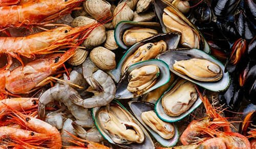 Mussels, clams, shrimp, scallops, oysters
