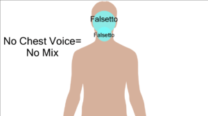 highlighted area in head where falsetto appears to come from