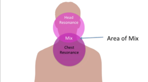 diagram showing the area where head and chest voice aree mixed