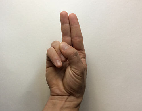 An index and middle finger held together like they're pointing
